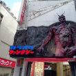 新宿 カラオケ店看板