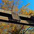 『寺社の銀杏』 白岩神社