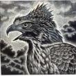 「長島充 野鳥版画展」谷津干潟に行ってきました