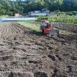 大川のヤギ達。田んぼの耕転。高知・大川町村総会。他のネコの尿、ごめんだにゃ。