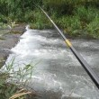 組合の釣り会