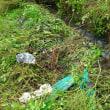 ●10/22 大久保農園報告 雨が続いています。WAKUWAKUは延期。