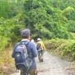窓ヶ山周回登山(3)  西峰-下山迄
