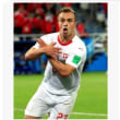 """< 2018FIFAワールドカップ ロシア> ドイツ人審判団、""""双頭のワシ""""パフォ…セルビア会長がFIFAを強く非難「残虐な略奪」"""