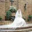 結婚相談(婚活アドバイス) 2732