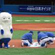 日曜現地で\横浜優勝/してました。