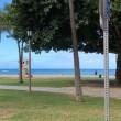 ハワイ旅行 四日目 カイマナビーチ~カハラモール