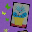 観葉植物🌿