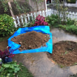 来年の庭作り