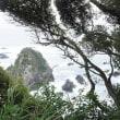 足摺岬へドライブしました。