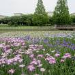 白鷺公園 (堺市)