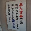 あんず亭@稲毛海岸 巨大な自家製梅入り「梅干しラーメン」が凄い!