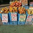 贅沢昼ごはんツーリング、淡路島カレー