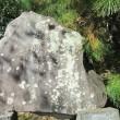 足利市の男体山を主とした日光三山碑を調査して来ました