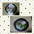 レンジでチンのきりたんぽ鍋
