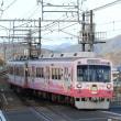 静岡鉄道は1000形同士のすれ違い(2019年1月 県総合運動場付近)