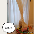 ラディッシュ初収穫(^O^)あお君ちのトイプーたち!