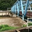 長良川も増水! 動画は増水前の、亀尾島川 瀬肩の鮎!