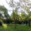 公園と美術館のコラボ
