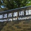 石川直樹展覧会 この星の光の地図を写す