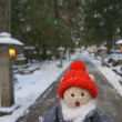 雪の高野山。宿坊「持明院」へ。雪積もる奥の院への参道の美しさ