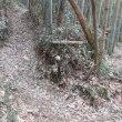 2 金甲山・怒塚山(403・332m:岡山市・玉野市)登山  いよいよ登山の開始