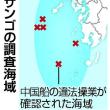 中国船のサンゴ密漁、九州西部海域で被害調査へ