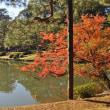 六義園・庭園散策