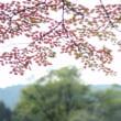 9月の軽井沢へ