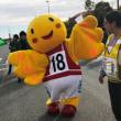 第8回神戸マラソン ~その6.ありがとうの42.195キロ