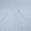【大雪山国立公園・旭岳情報】姿見の池園地一周 白い世界