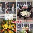クォン・サンウ『Kwon Sang Woo The Stage 2017』東京公演⑩~綺麗なお花✿~&今までのファンミーティングでは見たことのないサンウさんが!!♡