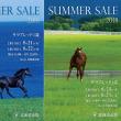 【サマープレミアムセール2018(Summer Premium Sale)】&【サマーセール2018(Summer Sale)】の「事前公開資料」が公開!