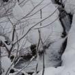 里山は豪雪です!