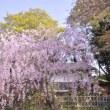 姫路へ_2015年4月