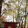 2017紅葉 竈門神社