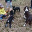 犬ともだち4人で恒例ランチ会、富田林の西尾にて