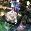 岩屋堂公園(瀬戸市)