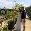和泉リサイクル環境公園での撮影会と葉菜の森