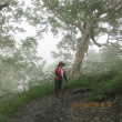 白馬八方尾根の霧