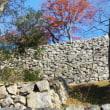 ラ コリーナと彦根城