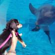 海洋博公園でイルカさんとご挨拶