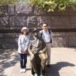 フランクリン・D・ルーズベルト記念公園 (4/28)