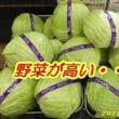 野菜が高い・・・