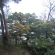 行く秋が深まりつつ・・・ブログ更新しました!