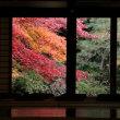 南禅寺発祥の地・同塔頭「南禅院」の紅葉を