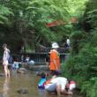 魚釣りと川遊び