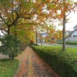 晩秋の景色