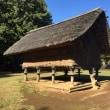 遺跡公園と歴史博物館