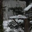 雪  切り干し大根  菊芋  冬の準備終わり  トマト